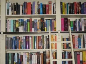 Domowa biblioteczka – wybieramy regał na książki